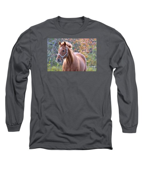 Long Sleeve T-Shirt featuring the photograph Horse Muscle by Glenn Gordon