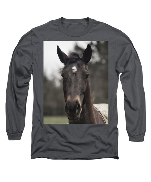 Horse With Gentle Eyes Long Sleeve T-Shirt by Belinda Greb