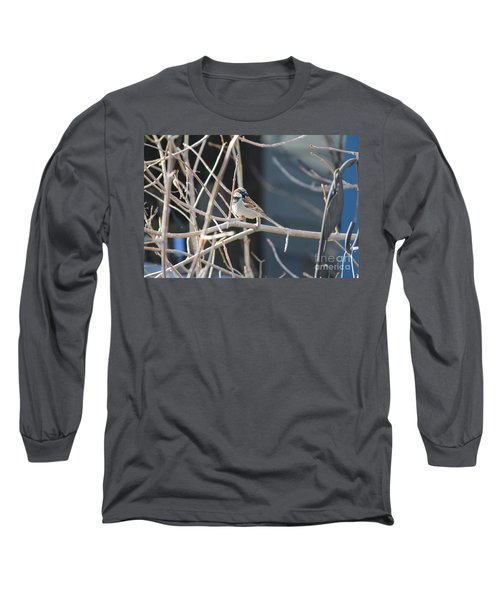 Long Sleeve T-Shirt featuring the photograph House Sparrow by Ann E Robson