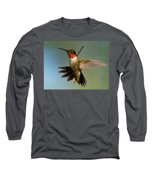 Hummingbird Beauty Long Sleeve T-Shirt