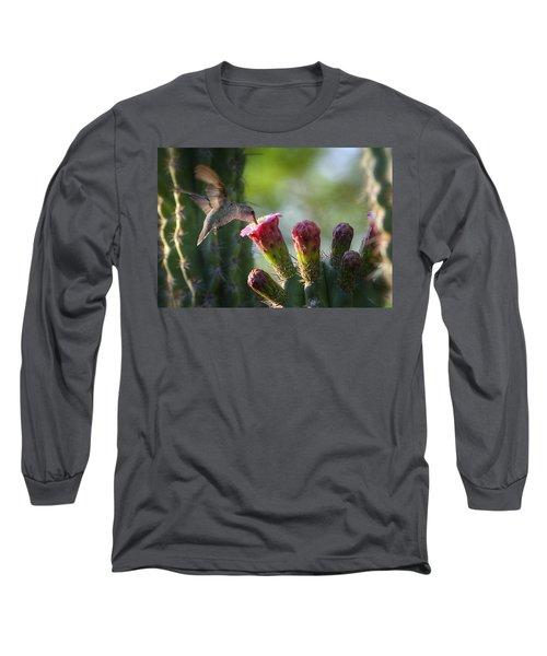 Hummingbird Breakfast Southwest Style  Long Sleeve T-Shirt