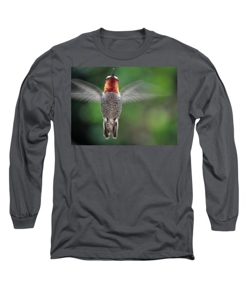 Long Sleeve T-Shirt featuring the photograph Hummingbird In Flight Male Anna by Jay Milo