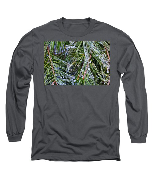 Ice On Pine Needles  Long Sleeve T-Shirt by Daniel Reed