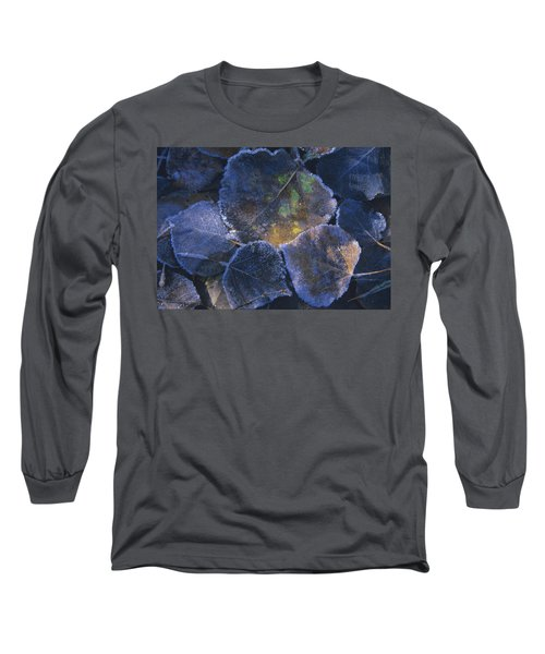 Icy Leaves Long Sleeve T-Shirt by Susan Rovira