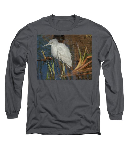 Immature Little Blue Heron Long Sleeve T-Shirt