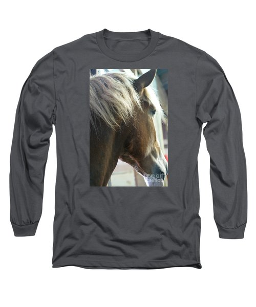 In His Farthest Wanderings Still He Sees Long Sleeve T-Shirt by Linda Shafer