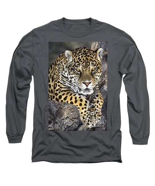 Jaguar Portrait Wildlife Rescue Long Sleeve T-Shirt by Dave Welling