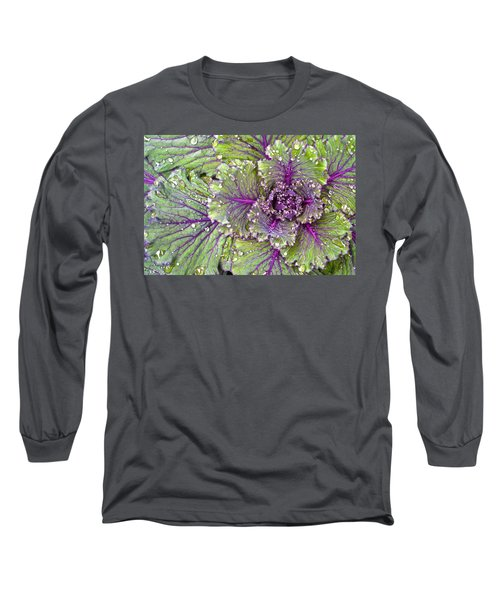 Kale Plant In The Rain Long Sleeve T-Shirt