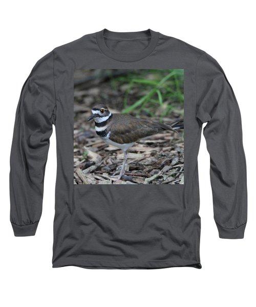 Killdeer Long Sleeve T-Shirt by Dan Sproul