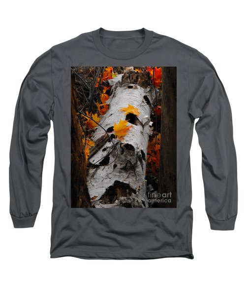 Laying Birch Long Sleeve T-Shirt