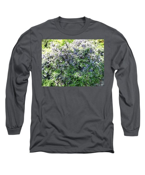 Lincoln Park In Bloom Long Sleeve T-Shirt by David Trotter