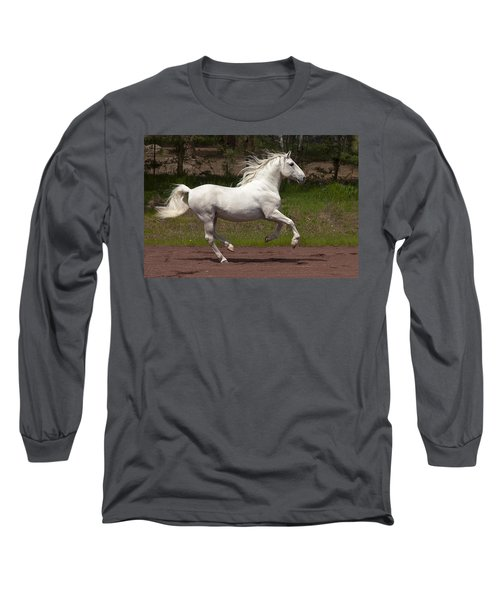 Lipizzan At Liberty Long Sleeve T-Shirt by Wes and Dotty Weber
