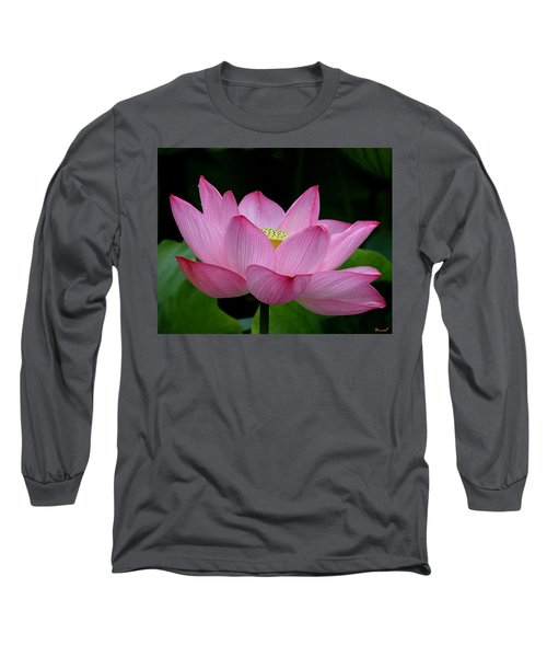 Lotus-center Of Being IIi Dl033 Long Sleeve T-Shirt