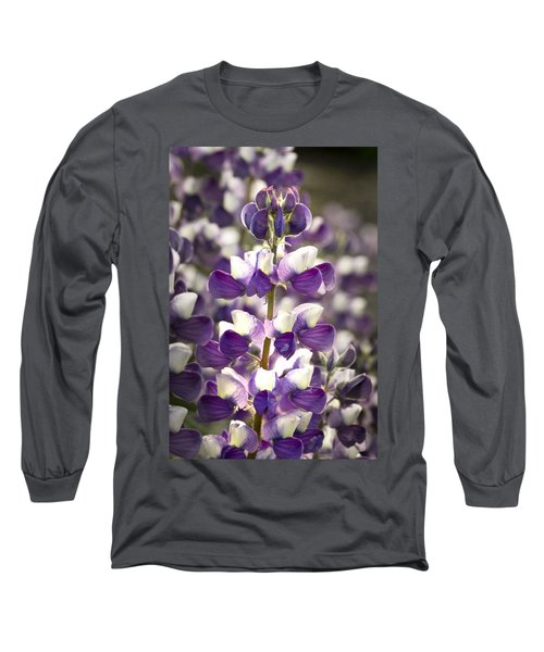 Long Sleeve T-Shirt featuring the photograph Lupine Wildflowers by Sonya Lang