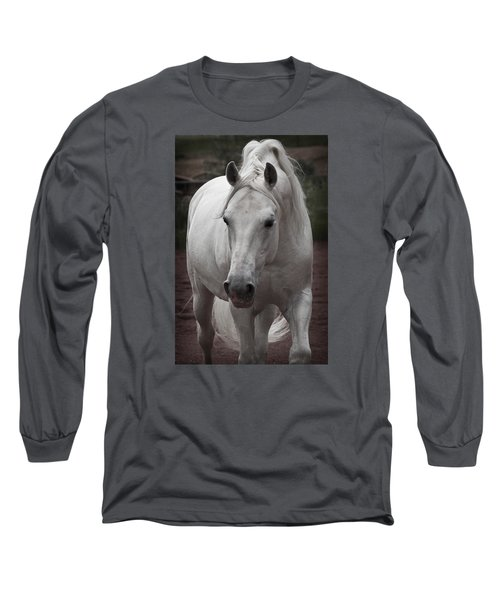 Maestoso II Ambrosia Long Sleeve T-Shirt by Wes and Dotty Weber