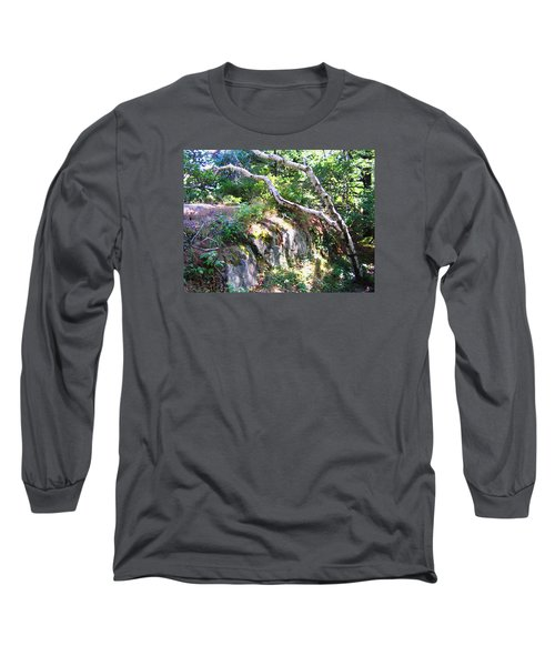 Maine Long Sleeve T-Shirt by Oleg Zavarzin