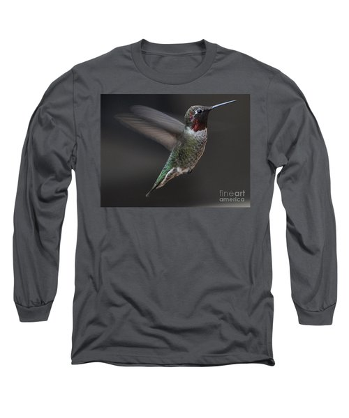 Long Sleeve T-Shirt featuring the photograph Male Anna Hummingbird In Flight by Jay Milo