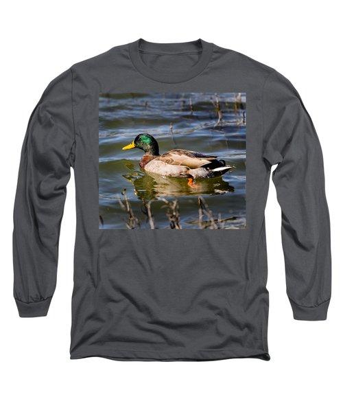 Mallard In Pond Long Sleeve T-Shirt