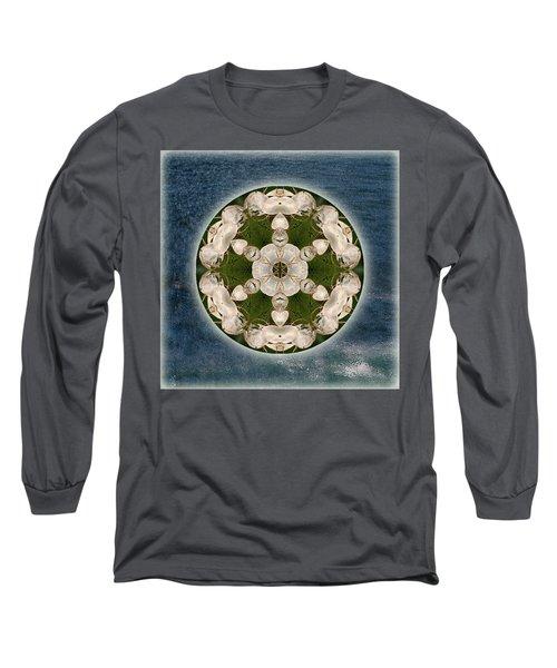 Manifesting Abundance Long Sleeve T-Shirt