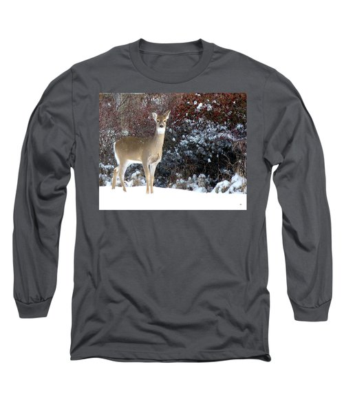 March Snow And A Doe Long Sleeve T-Shirt