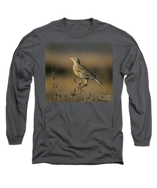 Meadowlark On Weed Long Sleeve T-Shirt by Robert Frederick