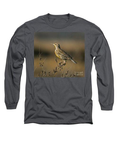 Meadowlark On Weed Long Sleeve T-Shirt