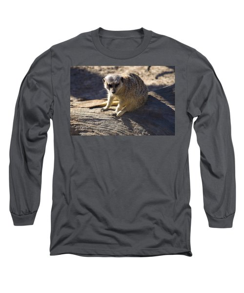 Meerkat Resting On A Rock Long Sleeve T-Shirt