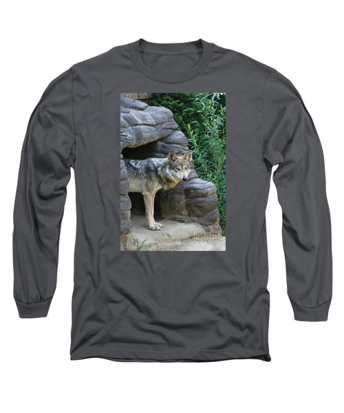 Mexican Wolf #2 Long Sleeve T-Shirt