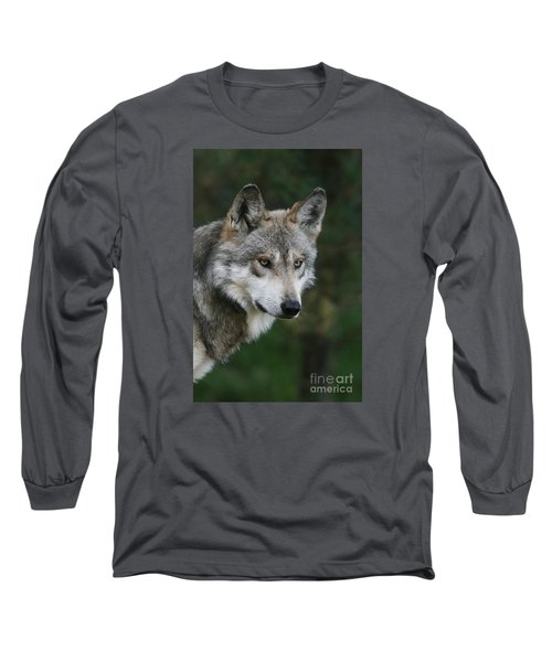 Mexican Wolf #4 Long Sleeve T-Shirt