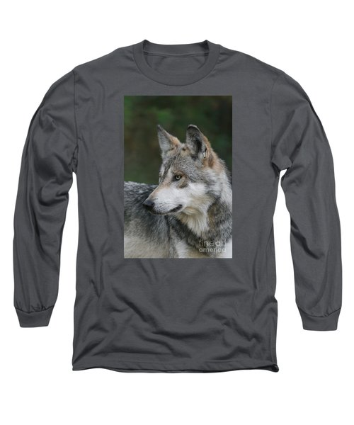 Mexican Wolf #6 Long Sleeve T-Shirt by Judy Whitton
