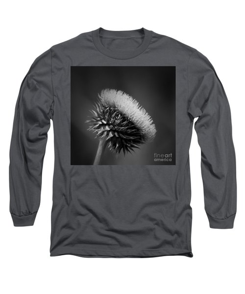 Milk Thistle Bw Long Sleeve T-Shirt by Maria Urso