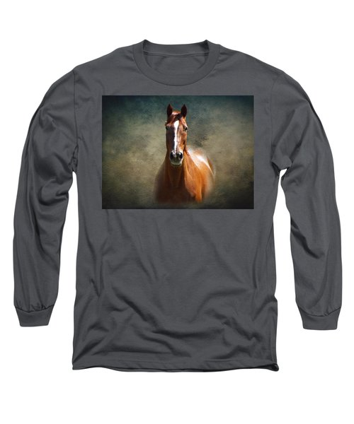 Misty In The Moonlight Long Sleeve T-Shirt by David Dehner
