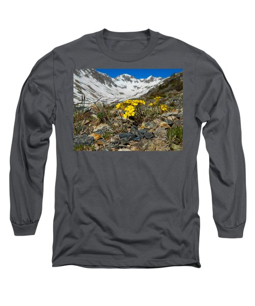 Blue Lakes Colorado Wildflowers Long Sleeve T-Shirt by Dan Miller