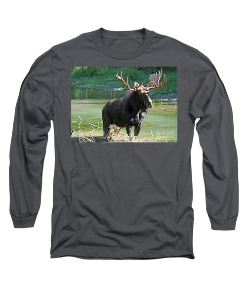 Moose Country Long Sleeve T-Shirt by Bob Hislop