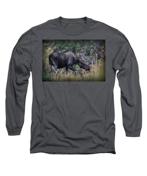 Moose In The Meadow Long Sleeve T-Shirt
