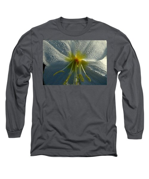 Morning Dew Long Sleeve T-Shirt by Steven Reed