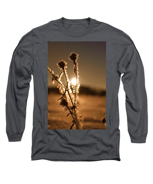 Long Sleeve T-Shirt featuring the photograph Morning Walk by Miguel Winterpacht