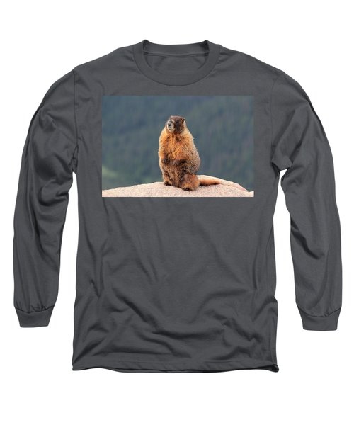 Mother Marmot Long Sleeve T-Shirt