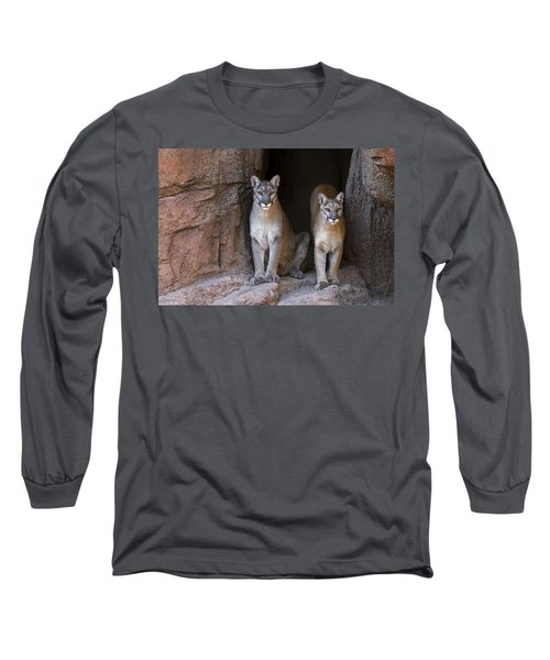 Long Sleeve T-Shirt featuring the photograph Mountain Lion 2 by Arterra Picture Library