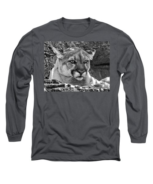 Mountain Lion Bergen County Zoo Long Sleeve T-Shirt