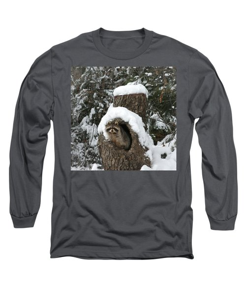 Mr. Raccoon Long Sleeve T-Shirt