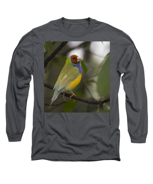 Multicolored Beauty Long Sleeve T-Shirt