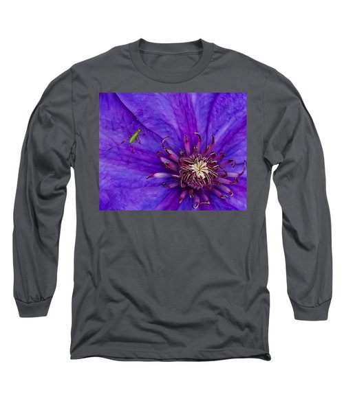 My Old Clematis Home Long Sleeve T-Shirt