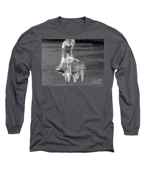 Long Sleeve T-Shirt featuring the photograph Nature's Ornament by Nina Silver