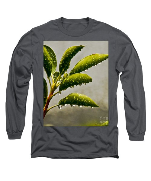 Natures Teardrops Long Sleeve T-Shirt by Carol F Austin
