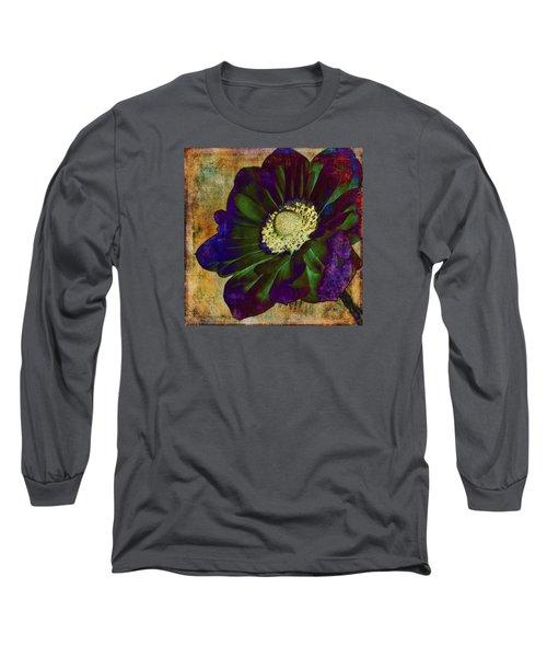 New Hue Long Sleeve T-Shirt