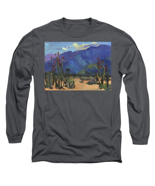 Ocotillos At Smoke Tree Ranch Long Sleeve T-Shirt by Diane McClary
