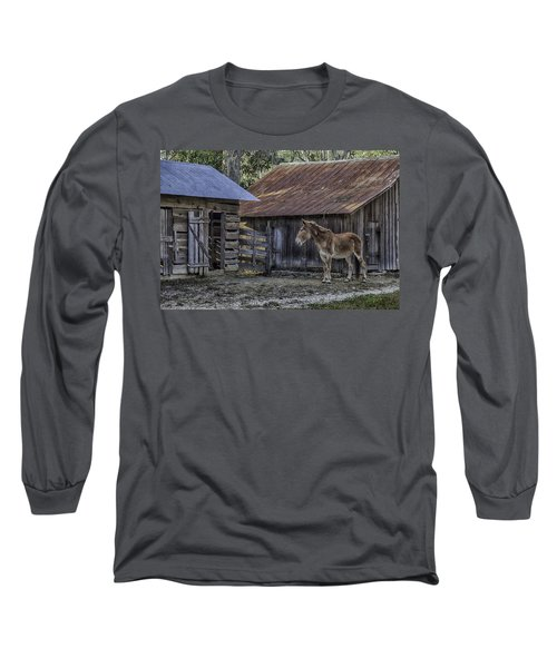 Old Red Mule Long Sleeve T-Shirt