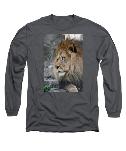 Long Sleeve T-Shirt featuring the photograph Onyo #11 by Judy Whitton