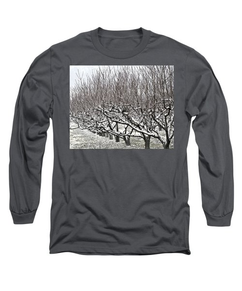 Orchard In Winter Long Sleeve T-Shirt